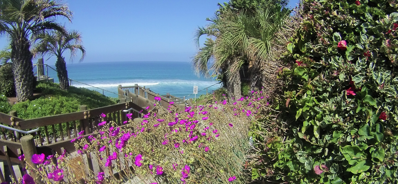 Encinitas Stairs to Beauty