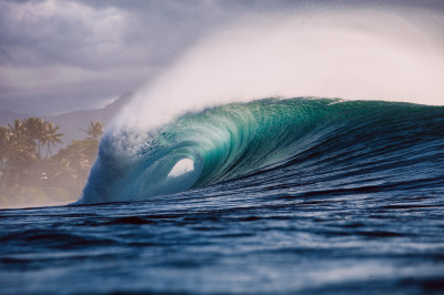 Hawaii Live Surf Cams and Surf Report