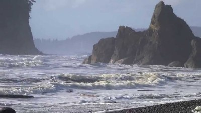 Washington Live Surf Cams and Surf Report