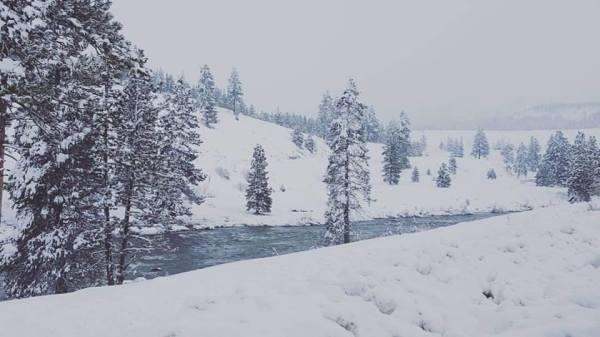 Truckee River - Winter Wonderland