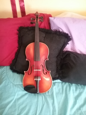 10 things no one tells you about learning the violin