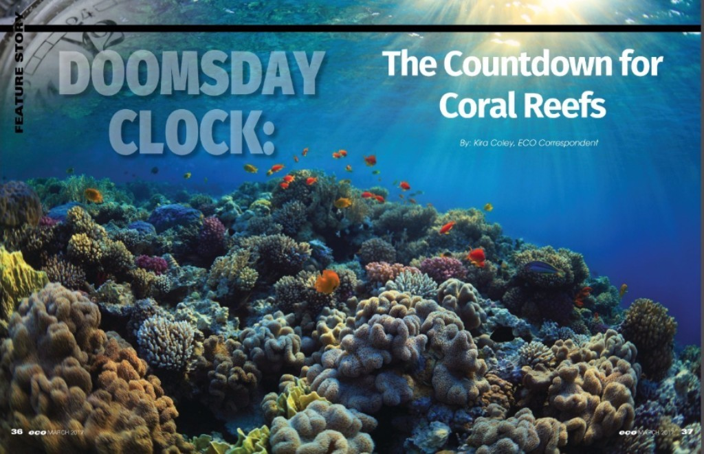 Doomsday Clock: The Countdown for Coral Reefs