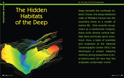The Hidden Habitats of the Deep