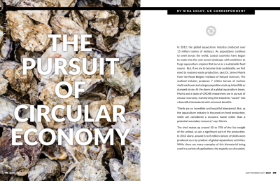 The Pursuit of Circular Economy