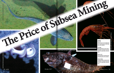 The Price of Subsea Mining