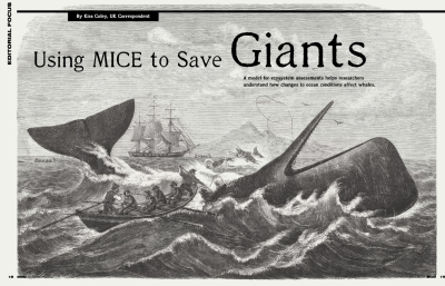 Using MICE to Save Giants