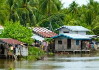 Cotabato River Life