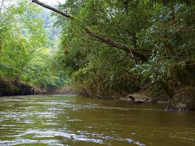brown water rafting