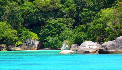 tropical similan island