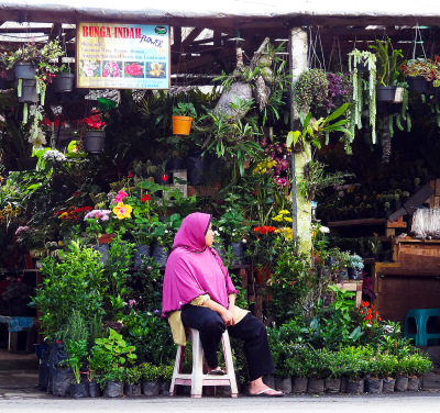 tropical flower shop