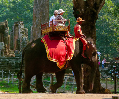 safe travel in Cambodia by elephant