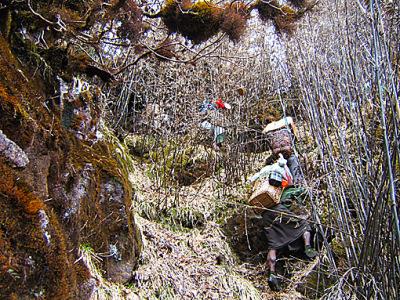 different climbing gear