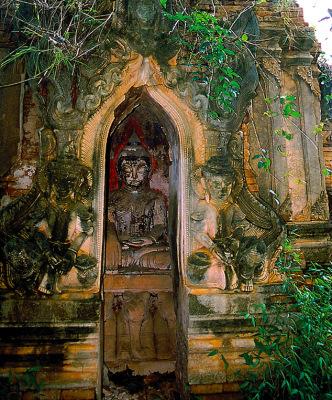 buddha shrine in the jungle