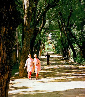 two nuns in Monywa