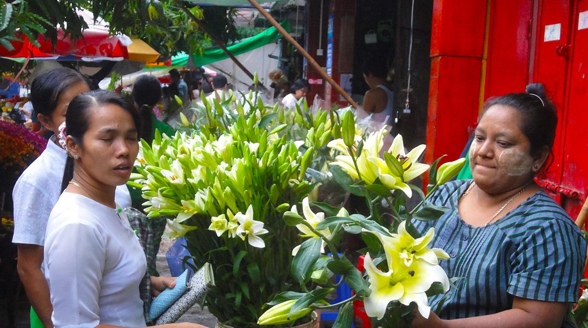 Yangon Flower Market