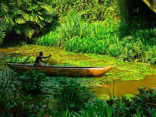 jurong bird park jungle setting