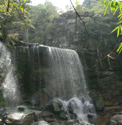 Trekking at Bokor National Park (3)