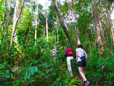 Trekking at Bokor National Park