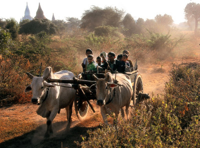 Native Myanmar Travel