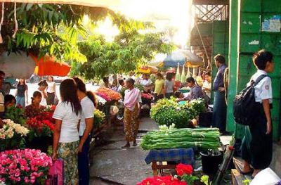 flower street market