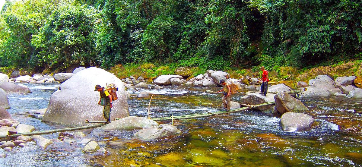Alaungdaw Kathapa National Park