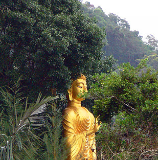 a golden Buddha statue in Krabi