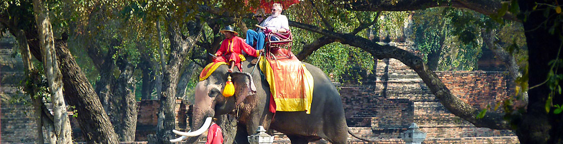 Ayutthaya sightseeing on the elephant