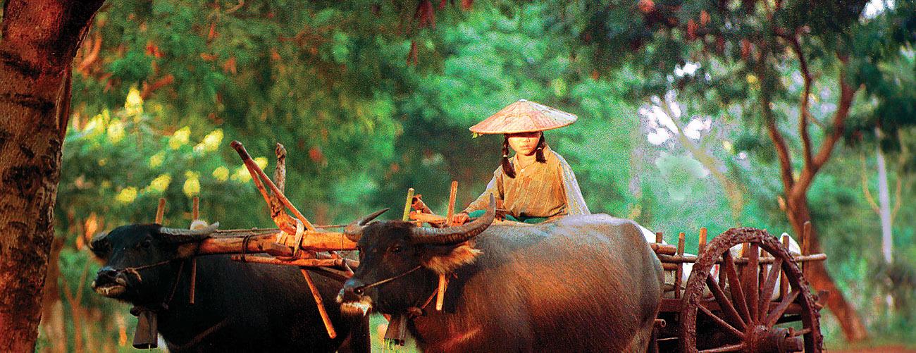 Reisen in ASEAN
