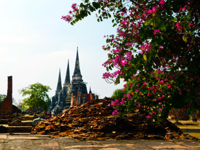 Ayutthaya Wat Phrasisanpetch