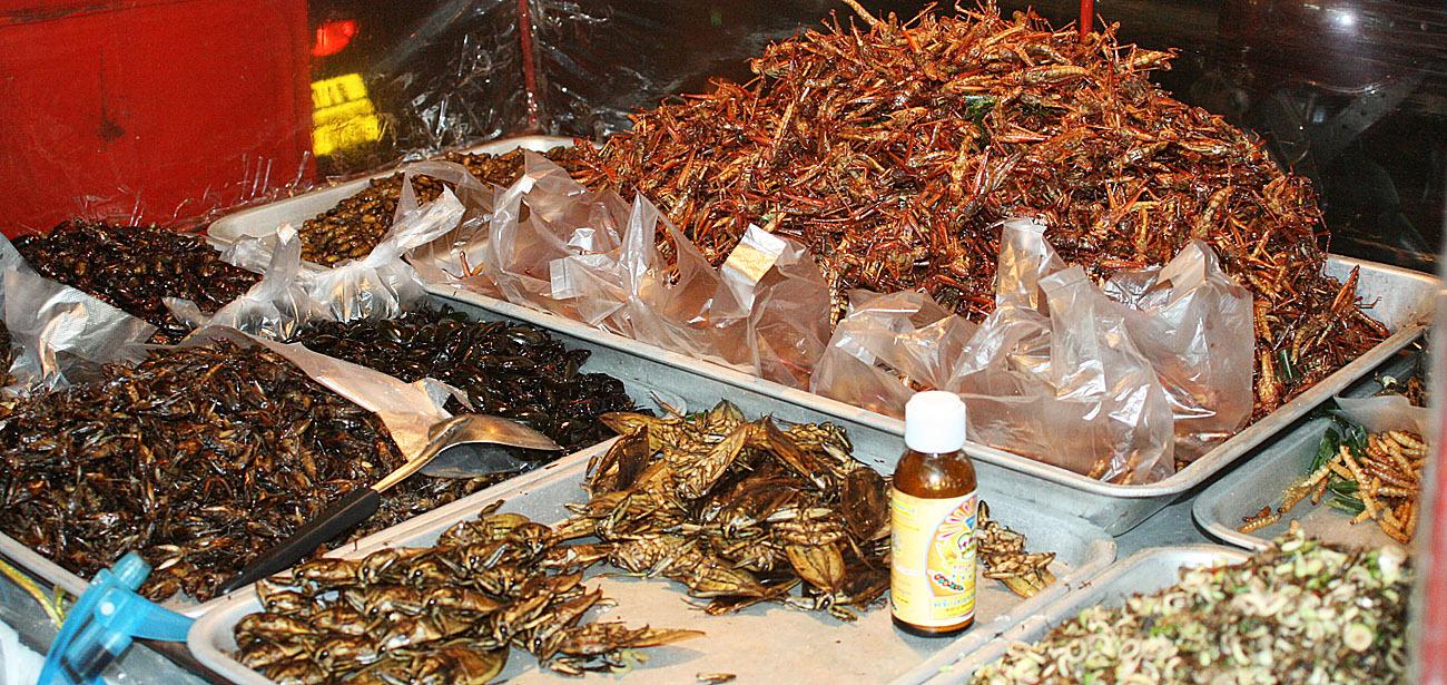 advanced Thai street food