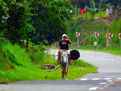 a ride to Mount Apo
