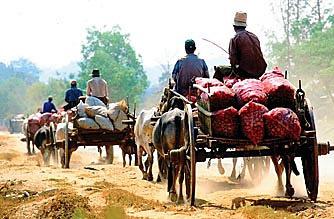 Bagan Oxcart Trip