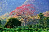 Mandalay towards Shan state