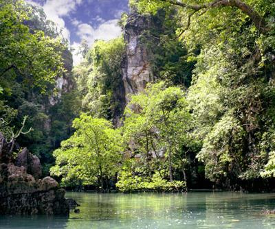 phuket day tour