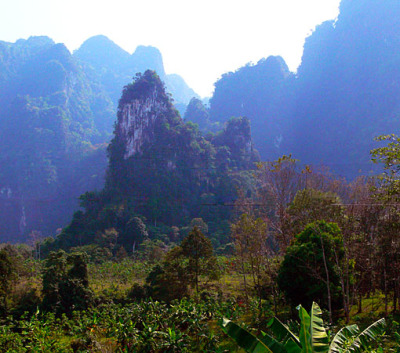 Phuket Khao Sok Day Tour (3)