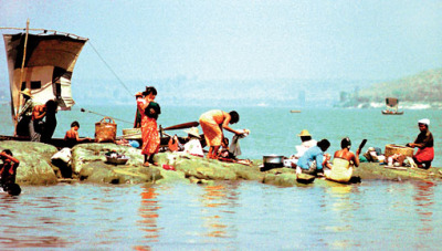 Irrawaddy River Life