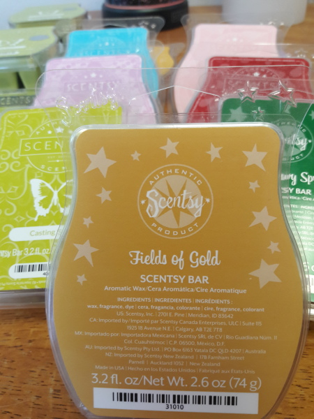 Scentsy Party!