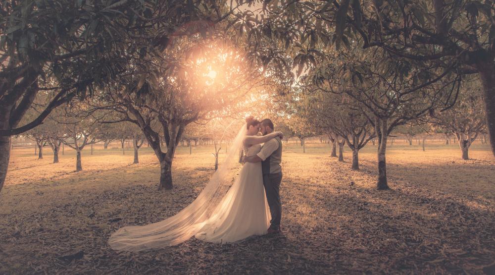 Scott + Tiffany | Family Farm | Lockyer Valley Wedding Photography