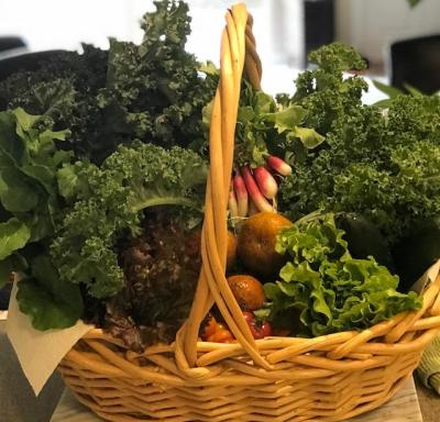 Organic locally grown fruits + vegetables from the farmers market