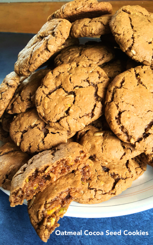 Oatmeal Cocoa Seed Cookies