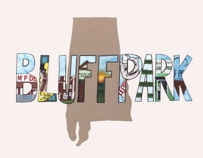 Bluff Park Skies