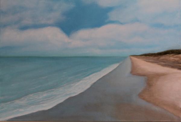 Shark Tooth Beach