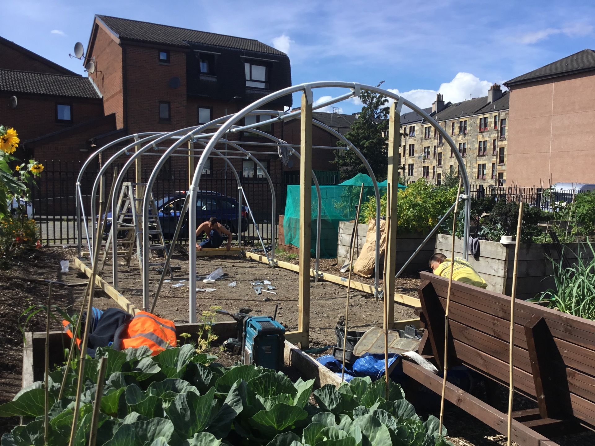 Polytunnel at Sutherland Street Growing Grounds