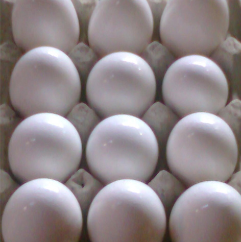 FRESH BROWN FOR SALE, WHITE CHICKEN EGGS FOR SALE,  chickens eggs for sale near me