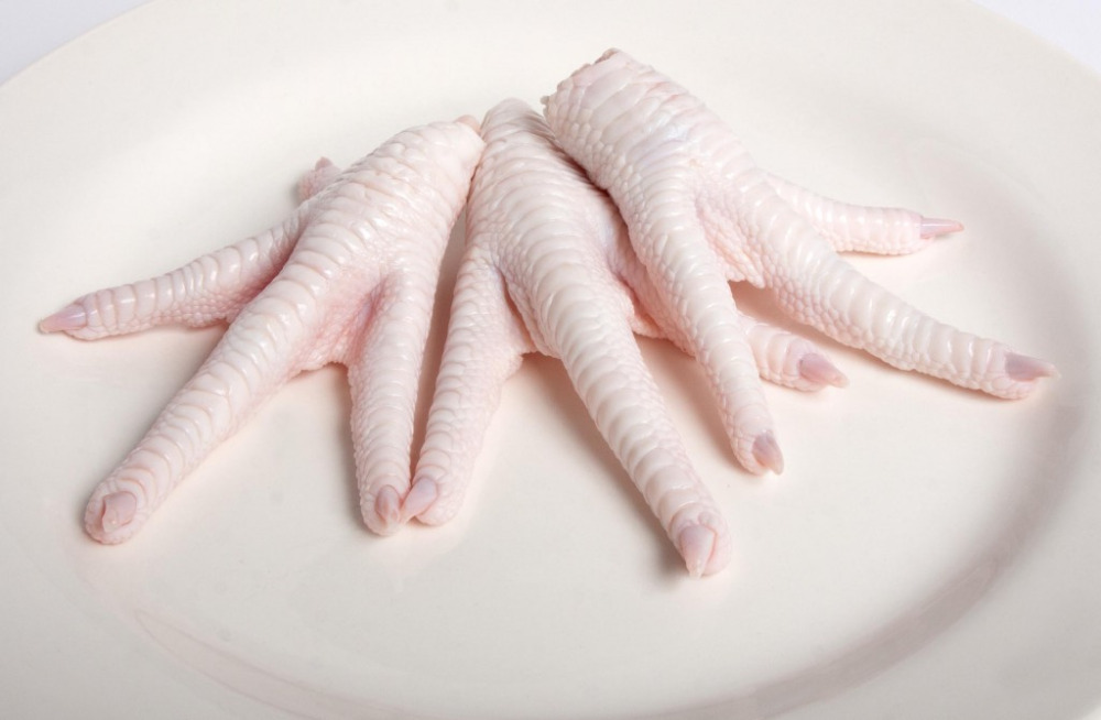 frozen chicken paws manufacturers | frozen chicken feet suppliers in usa