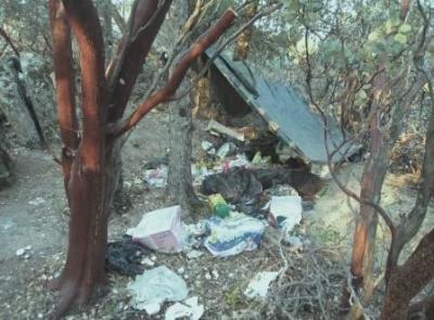 trash overgrown weeds negelect
