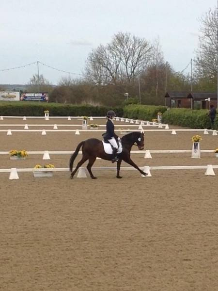 Katie Keogh takes 8th place at the KBIS Novice Winter Champs :-)