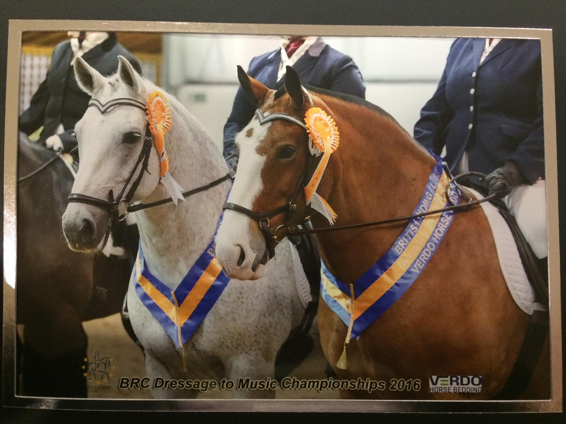 Dressage to Music National Championships