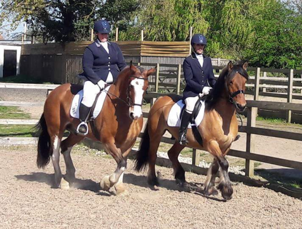 Team friendly and Dressage to Music Qualifier