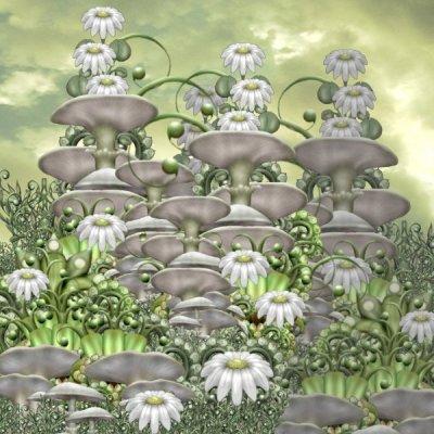Mushroom Club